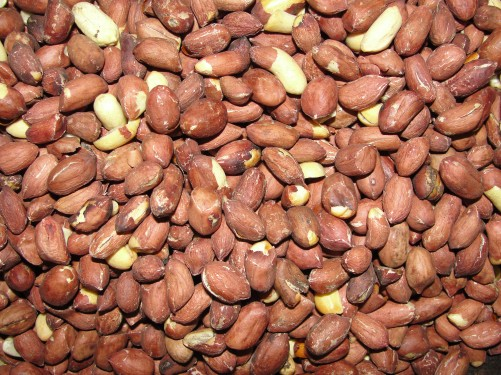 Peanut-Exporters,Suppliers-in-Chennai-Tamilnadu