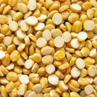 Chana-Dal-Cereals-Suppliers-Exporters
